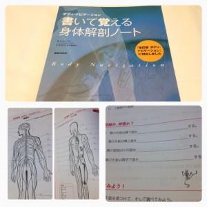 解剖ノート