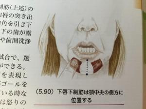 kashin_koukaku_141226 (6)