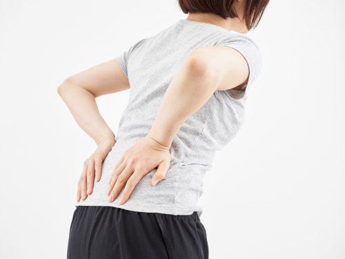 理学療法士 田代雄斗先生のコラム「腰痛と解剖②」