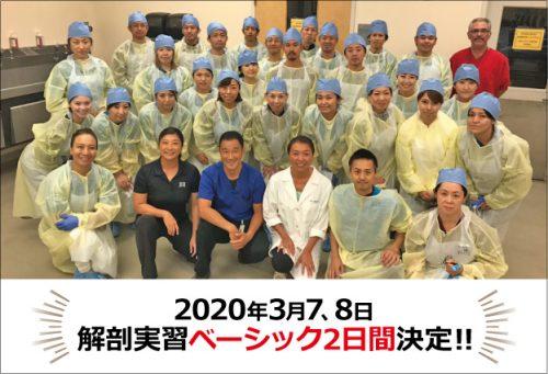 2020年3月7,8日「解剖実習ベーシック2日間」決定!!!