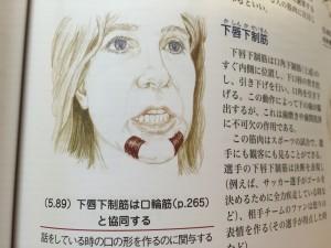 kashin_koukaku_141226 (5)