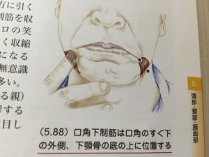 koukaku_141226 (4)